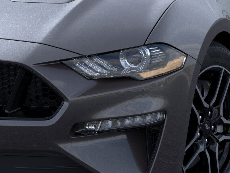 New 2019 Ford Mustang